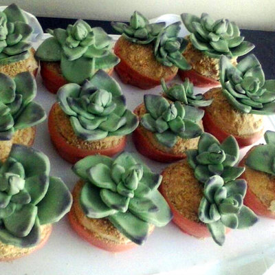 Succulent Cupcakes For A Bridal Shower Devils Food With Peanut Butter Frosting
