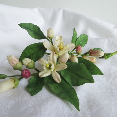 Sugar Zagara Flowers, The Blossoms Of Citrus Trees on Cake Central