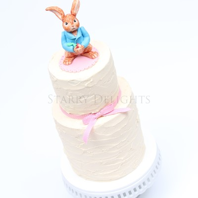 Peter Rabbit Cake And Tutorial