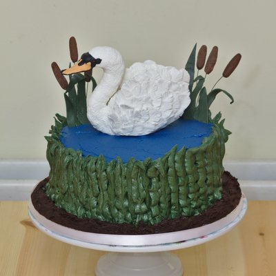 Swan Cake on Cake Central