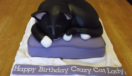Prime Cat Cake Decorating Photos Funny Birthday Cards Online Elaedamsfinfo