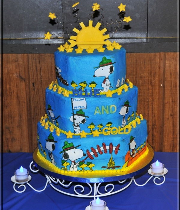 Cub Scouts Blue And Gold Cake