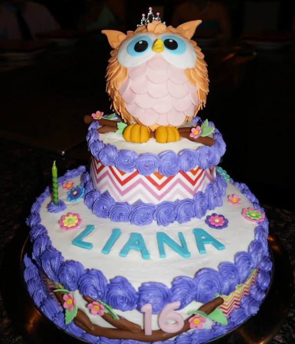 Sweet 16 Chevron Owl