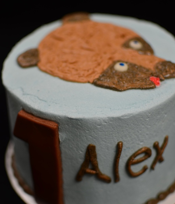 Brown Bear Brown Bear Buttercream Amp Fondant 1