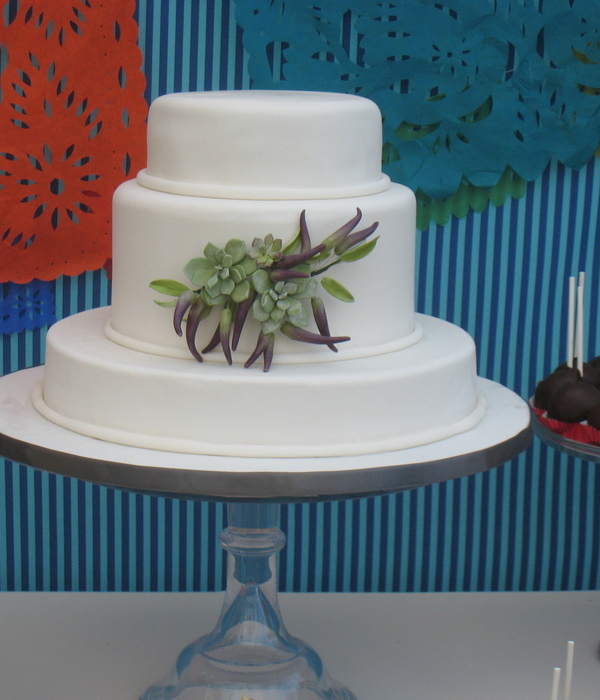 Gumpaste Succulents And Chilies I Used Alan Dunns Chili Pepper Instructions And This Tutorial For The Succulents Httpcakecentralcom