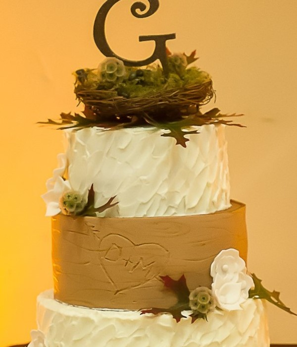 Wood grain Cake Decorating Photos