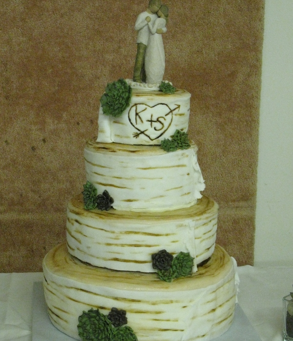 Birch Log And Succulents Wedding Cake