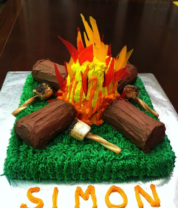 Remarkable Top Camping Cakes Cakecentral Com Personalised Birthday Cards Cominlily Jamesorg
