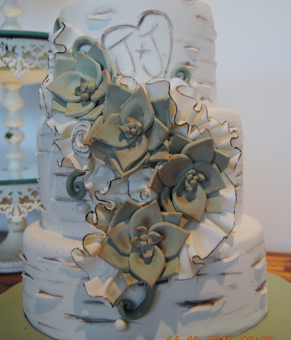 Birch And Succulents Wedding Cake