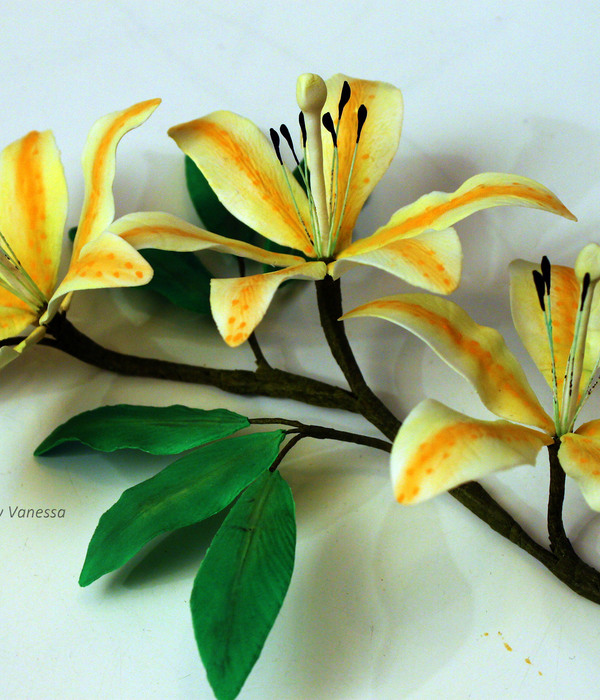 Lilies Made During The Course Pme Professional Diploma...