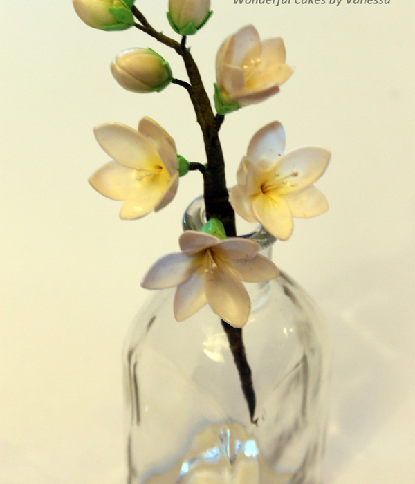 Freesia Made During The Course Pme Professional Diploma...