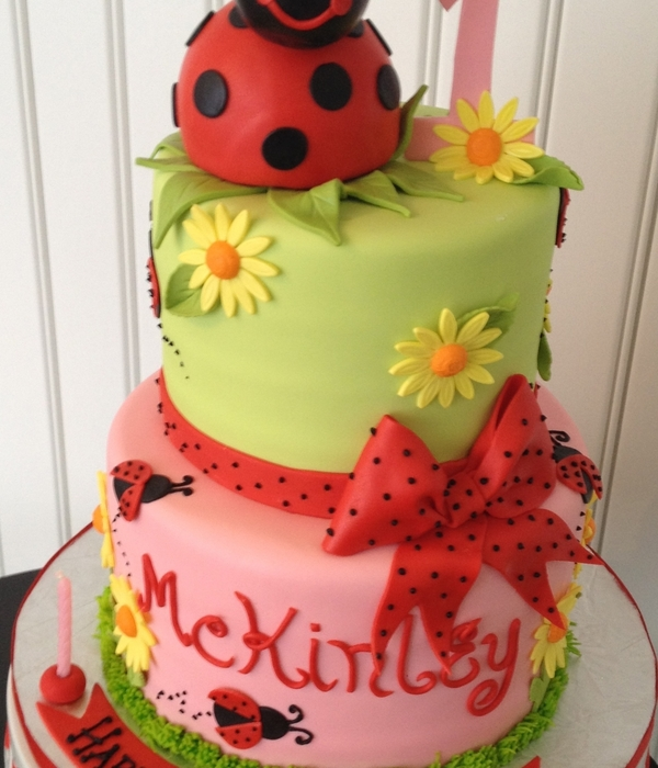 Lady Bug 1St Birthday Cake