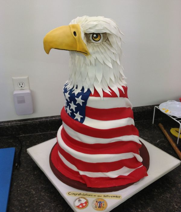 A Cake I Decorated At Work For A Retiring National Guard Airman The Top Half Of The Head And The Beak Are Styrofoam