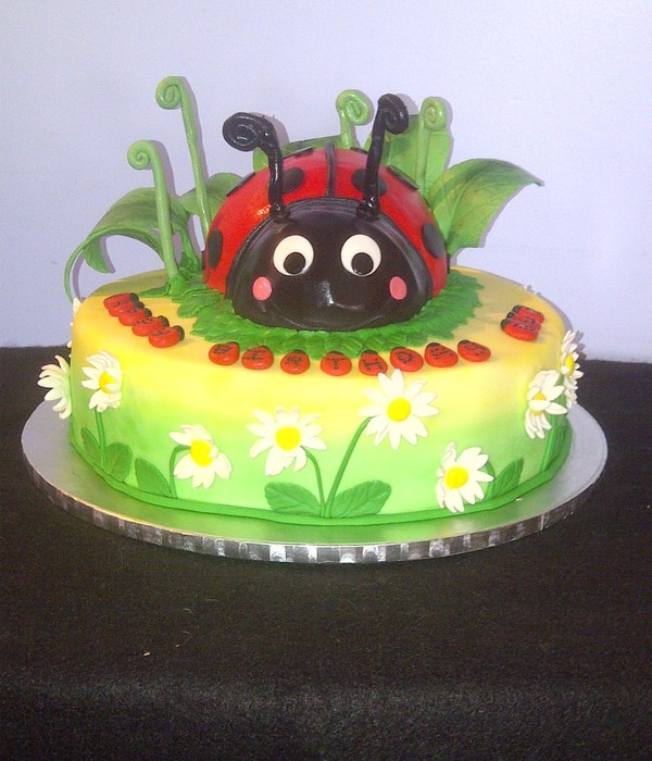 Ladybug And Daisy Cake Bottom Tier Is A 12 Coconut Cake...