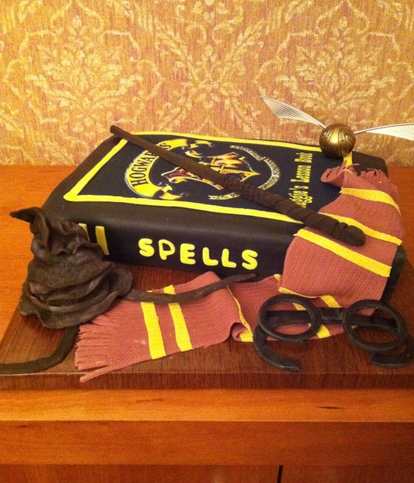 Harry Potter Spell Lesson Book Birthday Book Cake