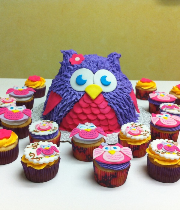 Chubby Owl Cake With Matching Cupcakes