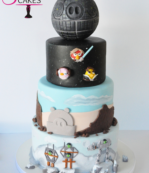 My Sons Birthday Theme This Year Was Angry Birds Star Wars His Attention To Detail Is Remarkable For A 7 Year Old We Butted Heads A Few T