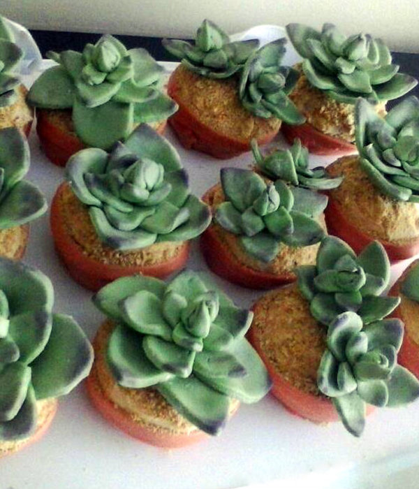 Succulent Cupcakes For A Bridal Shower Devils Food With Peanut Butter Frosting And Mmf Succulents And Pots