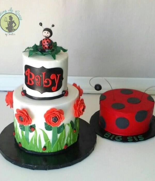 Lady Bug Babyshower