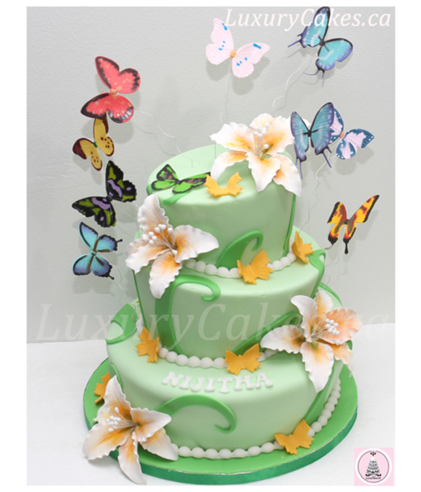 Butterfly Cake 1