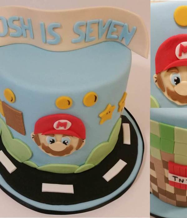 Mario Minecraft Cake For The Birthday Boy Who Just Couldnt...