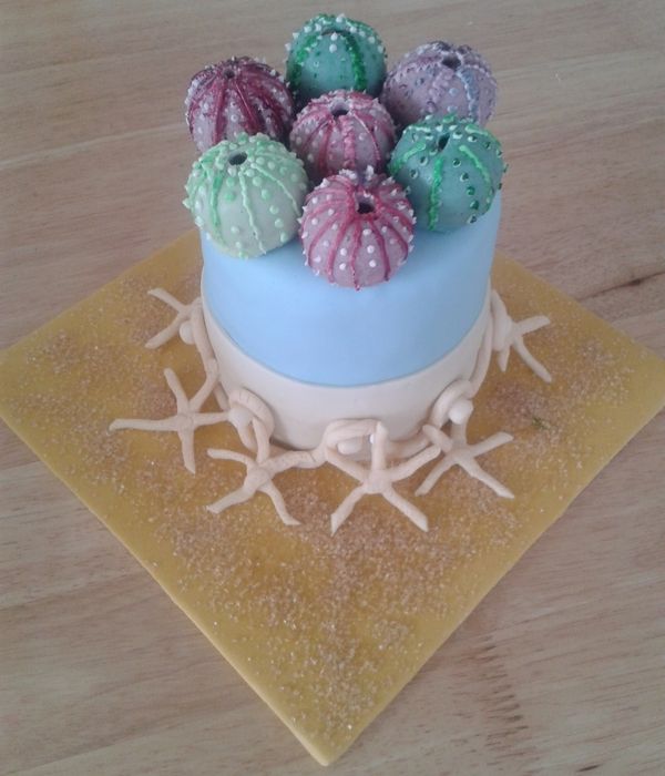 Sand And Surf Inspiration By Clarke's Cakes