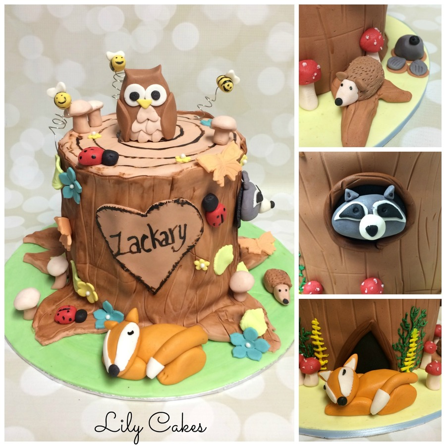 Tree Stump 1St Birthday Cake on Cake Central