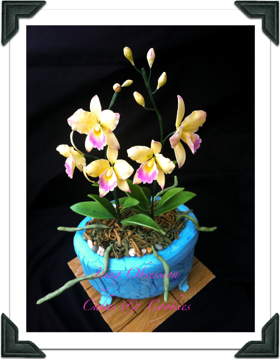 Cattleya Orchid Cake on Cake Central