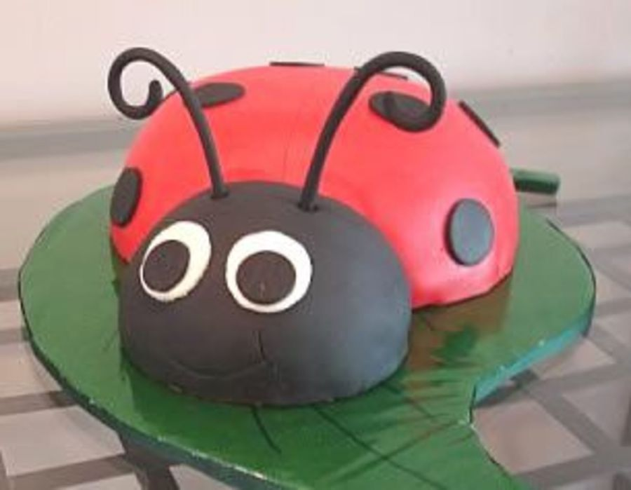 Little Ladybug  on Cake Central