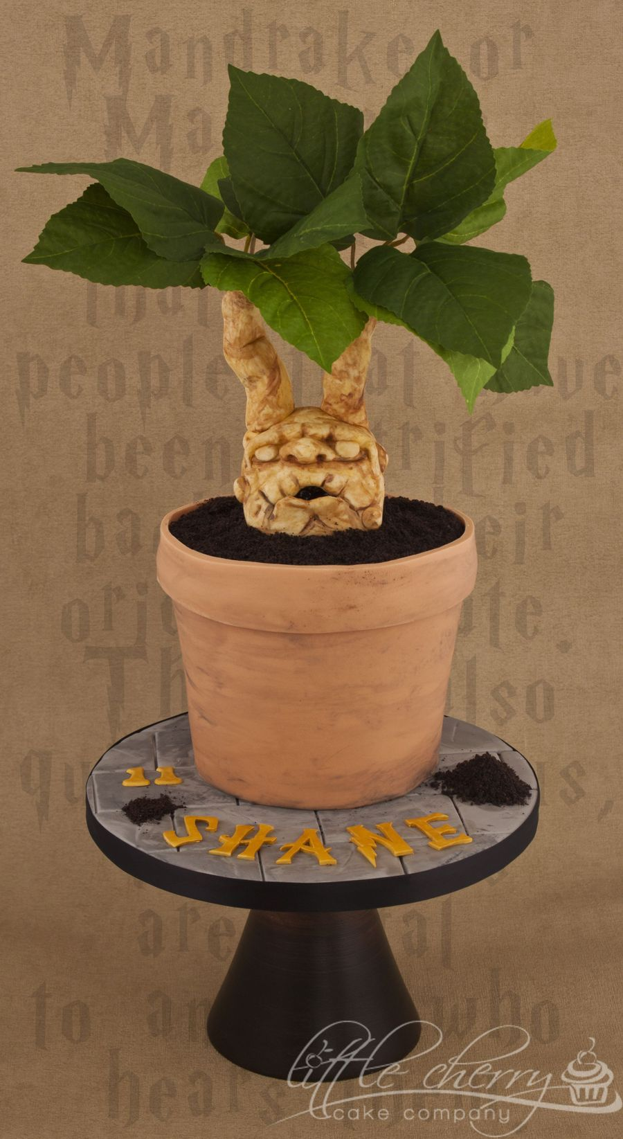 Mandrake Plant Cake Harry Potter  on Cake Central
