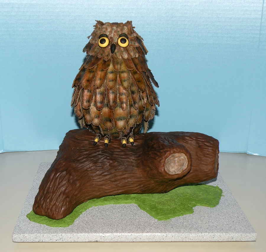 Owl On Branch on Cake Central