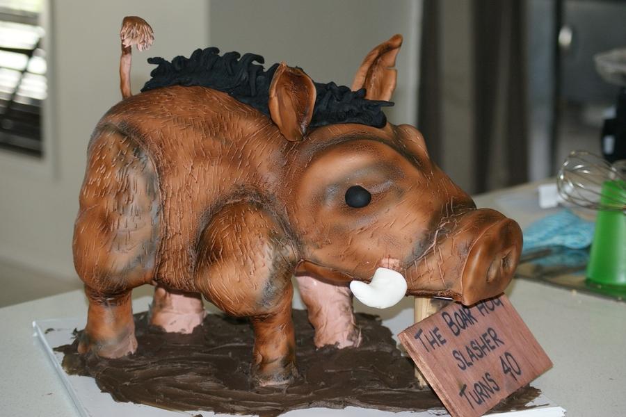 3D Wild Boar Cake on Cake Central