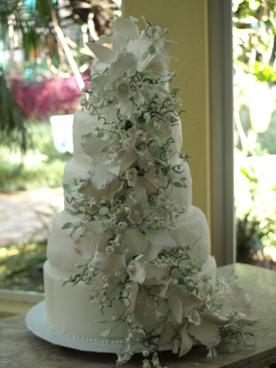 Orchids And Stephanotis on Cake Central