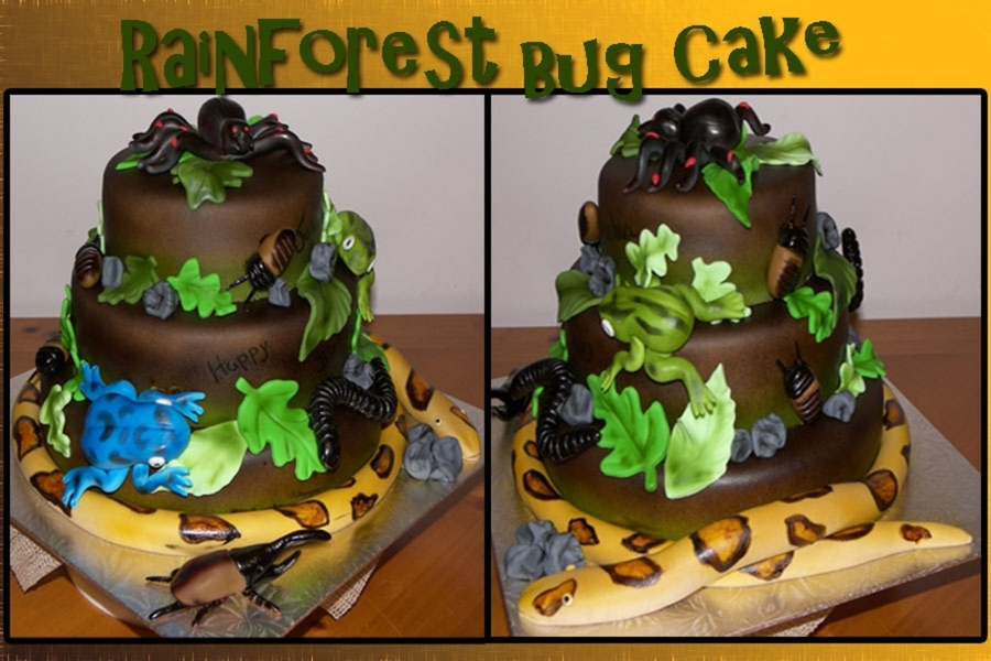 Rainforest & Bugs on Cake Central