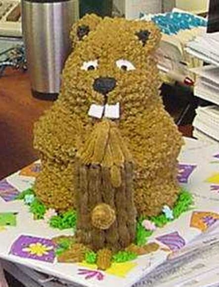 Hungry Beaver on Cake Central
