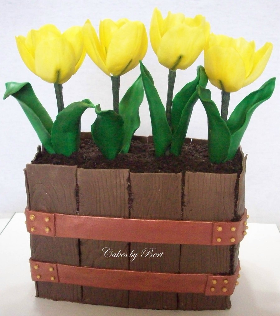 Kasha's Tulips on Cake Central