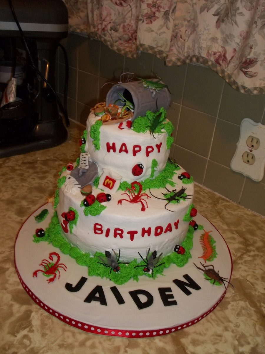 Jaiden's 3Rd Birthday Cake - Creepy Crawlers, Etc.. on Cake Central