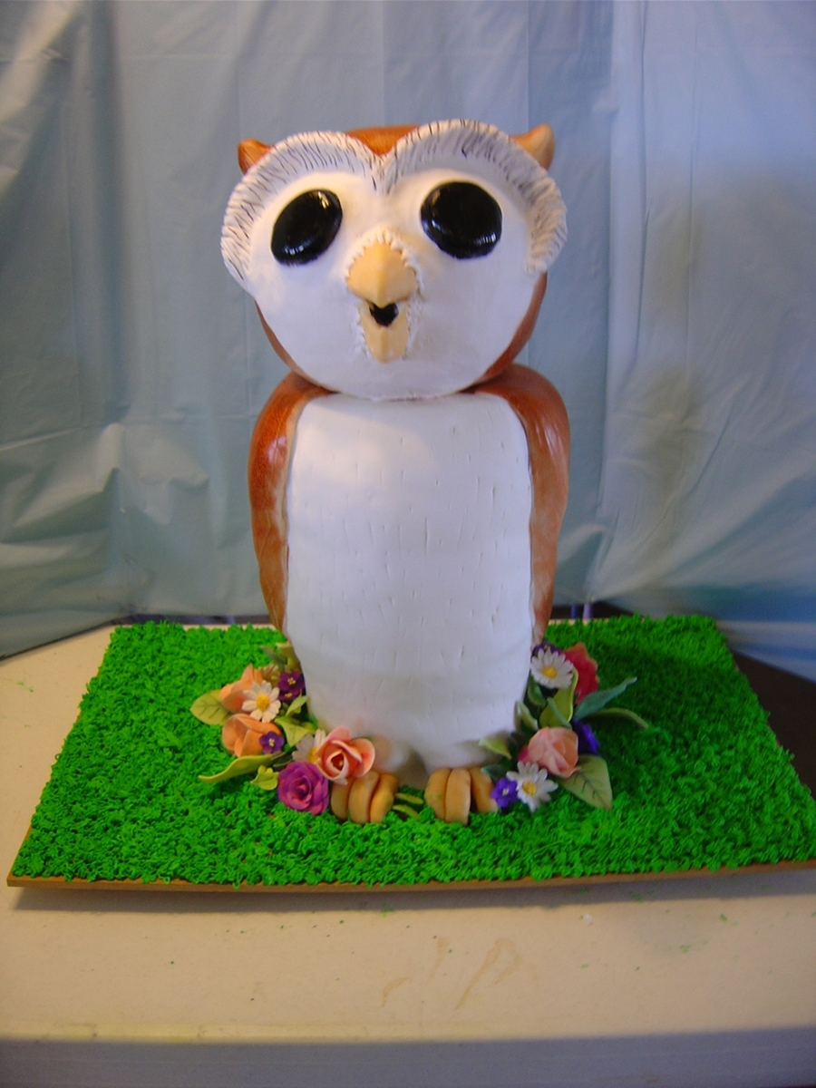 Owl & Flowers on Cake Central