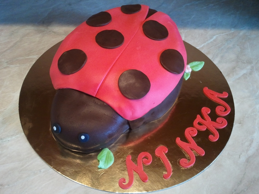 Chocolate Ladybug on Cake Central