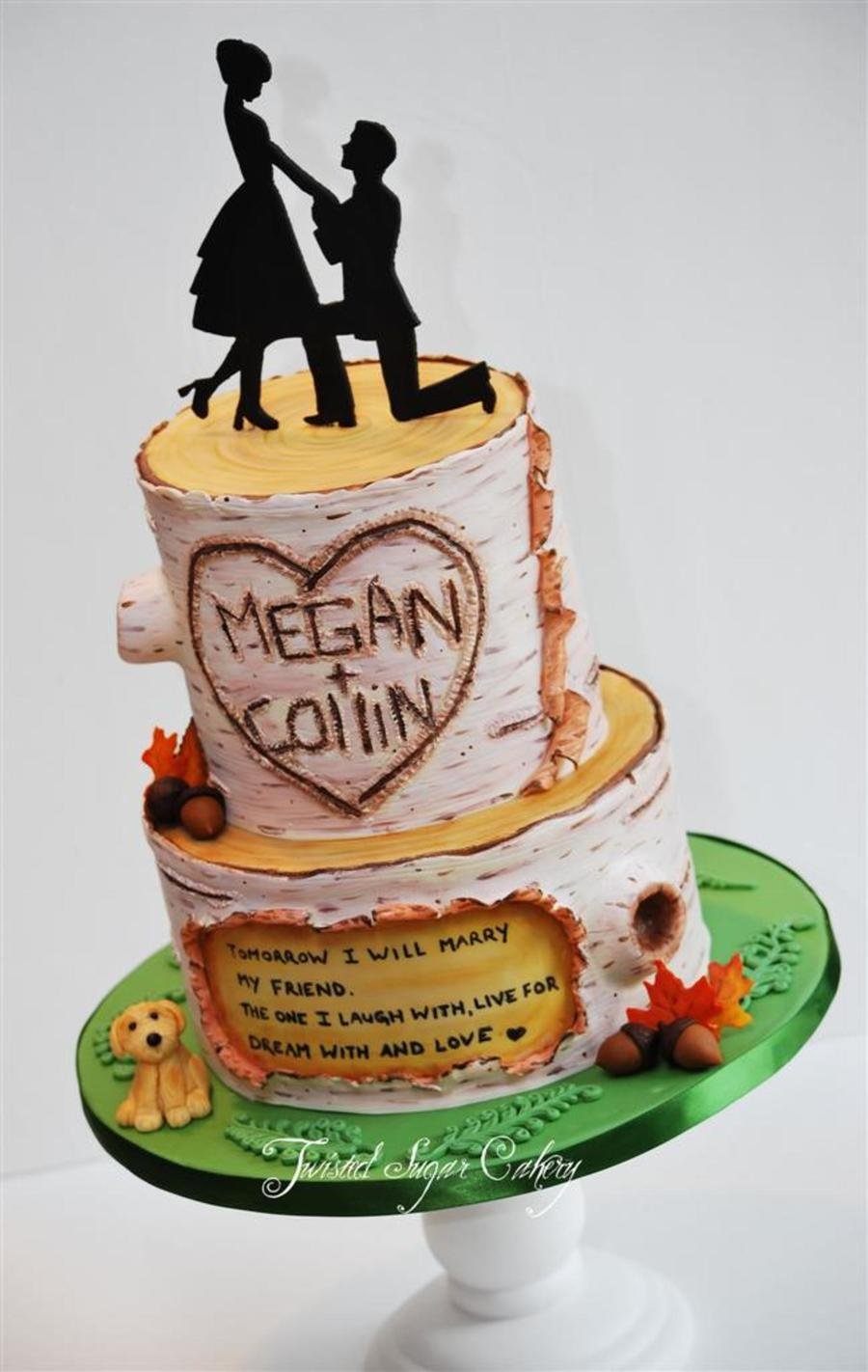 This Cake Was Based On Their Engagement Scene Proposal Was On A Hike With Their Beloved Dog on Cake Central