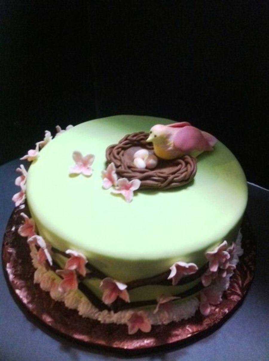 Cake Birthday Baby Bird