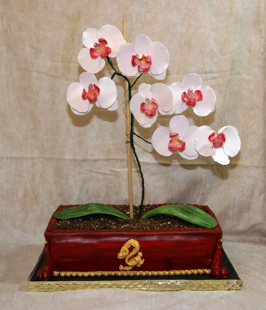 The Orchid Cake on Cake Central
