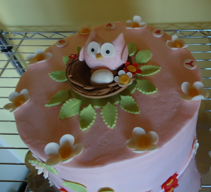 Owl Cakes Baby Girl