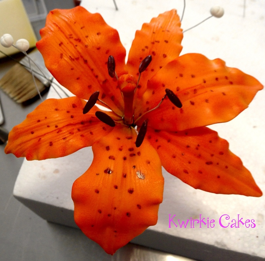 Tiger Lily on Cake Central