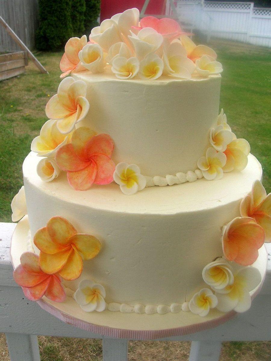 My Daughters Wedding Cake