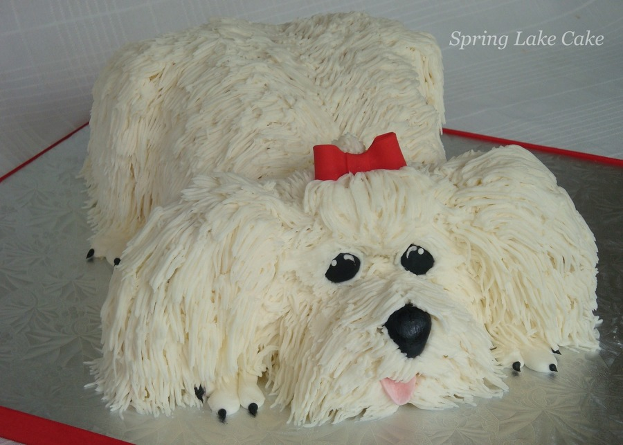 Maltese Dog Cake Cakecentral Com