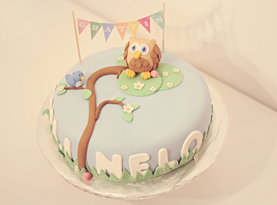 Owl Birthday Cake For Mili & Nelo on Cake Central