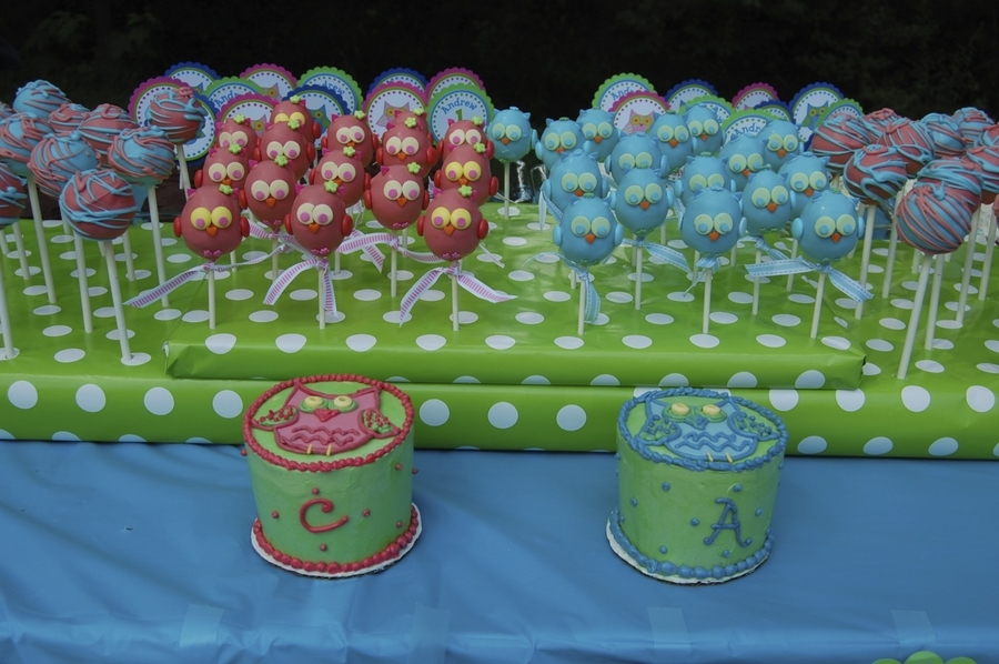 Owl Cake Pops And Smash Cakes on Cake Central