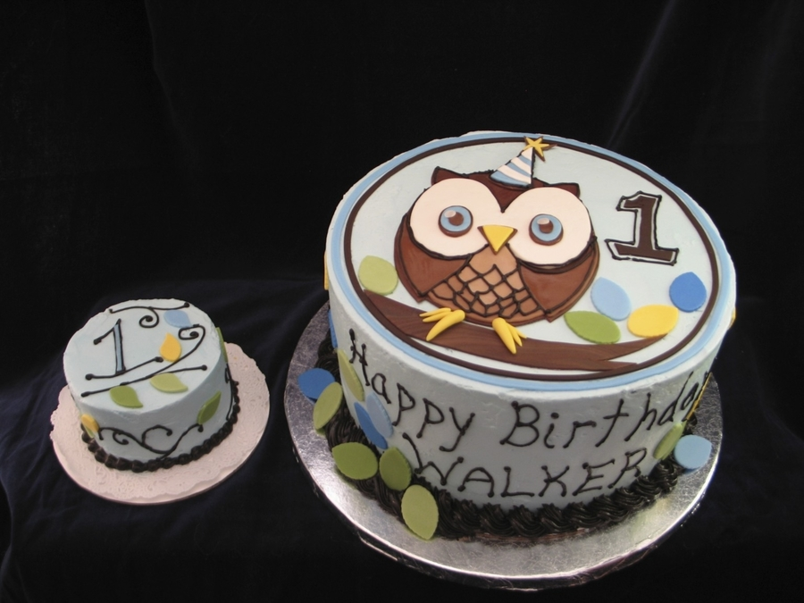 Owl Cake With Smash Cake on Cake Central