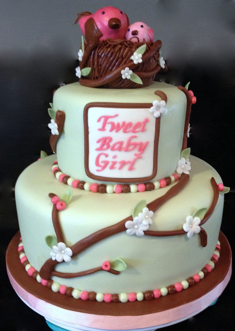 Tweet Baby Girl Cake Decorated In Fondant Birds And Nest ...